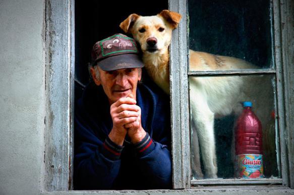 Маленькие породы собак названы наиболее подходящими для пожилых людей