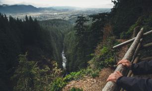 МЧС рассказало о правилах выживания в лесу