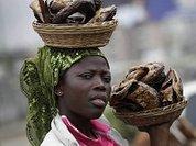 ООН отправляет женщин на огороды