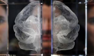 США пожирают науку, как жук-плавунец