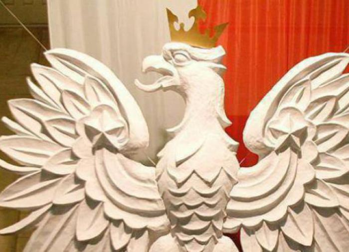 """""""Ведет себя как губернатор"""": почему в Польше требуют выслать посла США"""