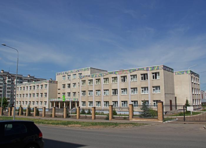 Большинство учеников казанской школы продолжат обучение дистанционно