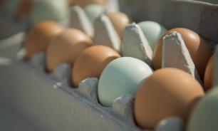 Clinical Nutrition: включение в рацион яиц позволит избежать потери зрения в старости