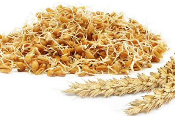 Хлопья из зародышей пшеницы: польза и вред