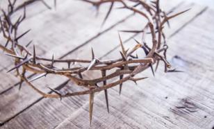 Мельница мифов: терновый венец Иисуса