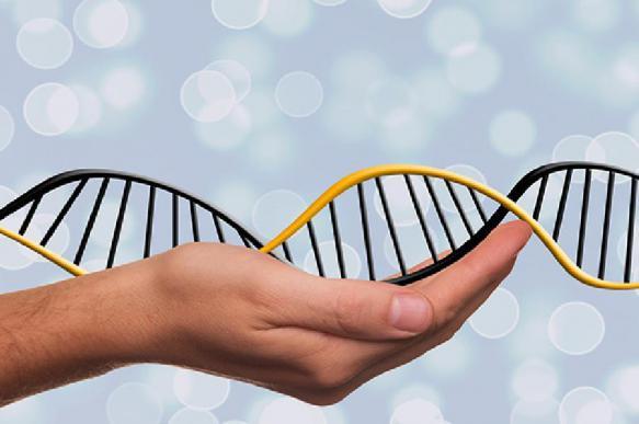 Лекарство от генетического заболевания может продлить молодость