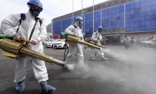 Вывод вирусологов: коронавирус в Пекин был завезен из-за границы