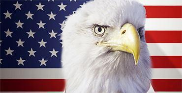 ЕвроСМИ: Союз медведя и дракона поставит американского орла на колени
