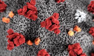 Алкоголь может убить больного коронавирусом