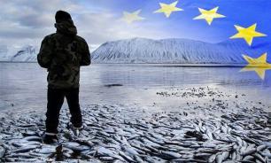"""Большинство в исландском парламенте составят """"зеленые"""" и пираты"""