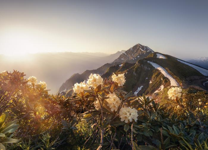 Сказка горного Черноморья