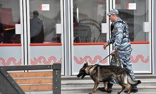 Собака нашла тайник со взрывчаткой на Ярославском вокзале