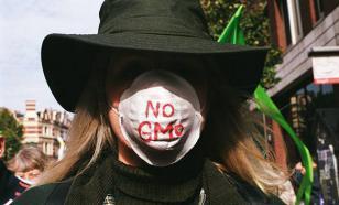 Европарламент не разрешил странам ЕС бороться с генно-модифицированными продуктами
