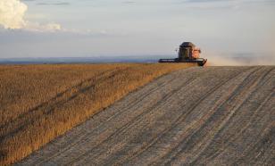 WSJ: Россия бьет не только по нашим выборам, но и по фермерам