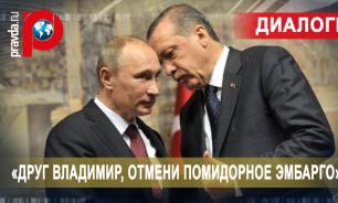 Эрдоган приехал с челобитной к Путину в Сочи: «Друг Владимир, отмени помидорное эмбарго»