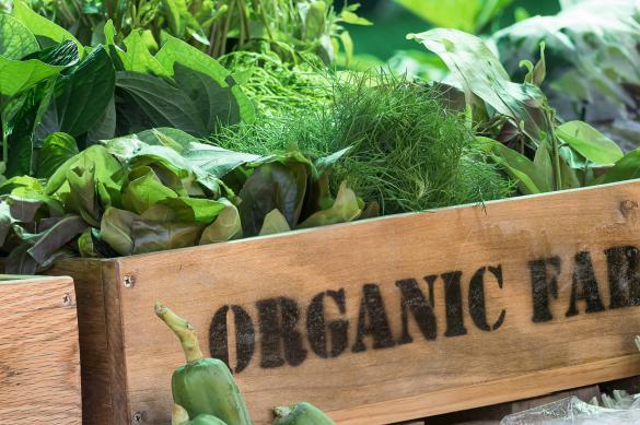 ЕС переходит на экологичное сельское хозяйство