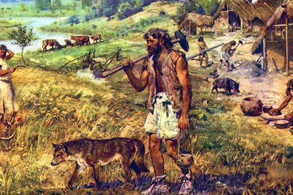 Историк рассказал об основных чертах эпохи неолита