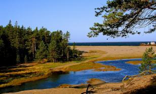 В Заволжье планируют создать туристический кластер за 1,6 млрд рублей