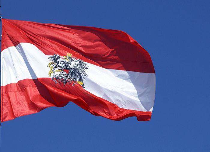 Австрийские пограничники не выпустили летевшего в Москву наблюдателя