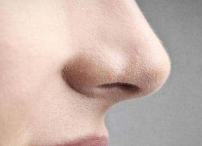 Почему у людей вырастает длинный нос