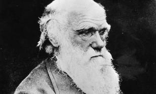 Письмо Дарвина о Библии в США продали почти за $200 тыс.
