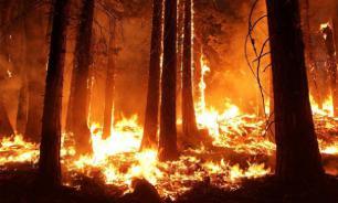 Особый противопожарный режим ввели власти Хакасии