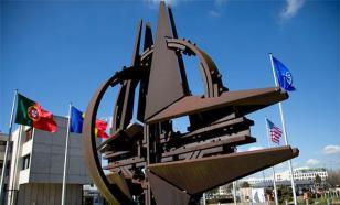 Трамп назвал себя поклонником НАТО