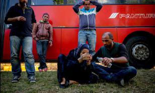 Мигранты начали диктовать Европе законы и правила