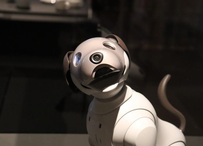 В Китае создали самого быстрого робота-собаку в мире