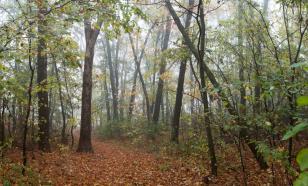 В Калмыкии появится туркластер площадью свыше миллиона гектаров