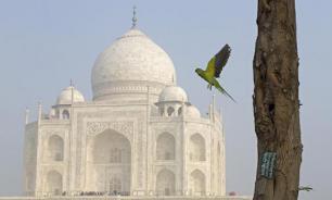 В Индии могут запретить криптовалюты