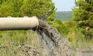 В Приморье произошла очередная экологическая катастрофа - 7 августа 2006 г.