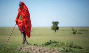 Scientific Reports: рост населения Африки угрожает экосистеме континента