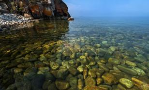 В озере Байкал начала мутнеть вода из-за массового вымирания губок