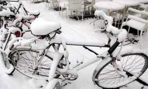 Сирийские беженцы раскупают велосипеды в Мурманской области