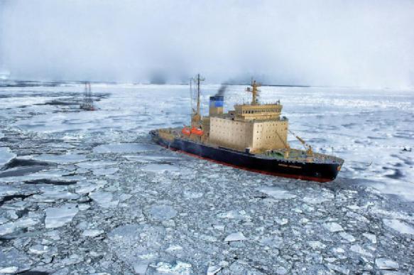 После 14 месяцев в Антарктиде у полярников уменьшился мозг