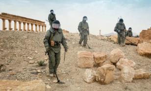 Сирийские военные разминировали 2,1 гектара за сутки