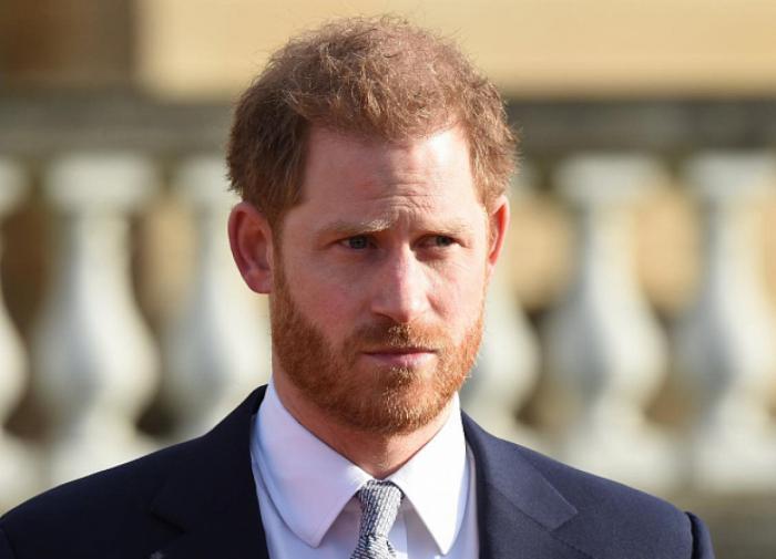Принц Гарри: жизнь во дворце - смесь между шоу Трумэна и пребыванием в зоопарке