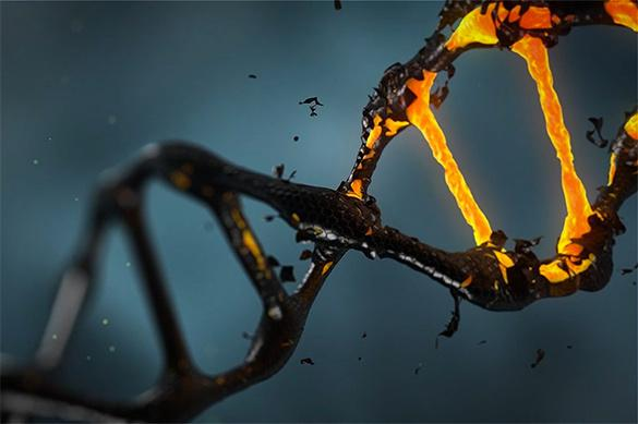 Ученые: Восстановить ДНК можно, занимаясь спортом