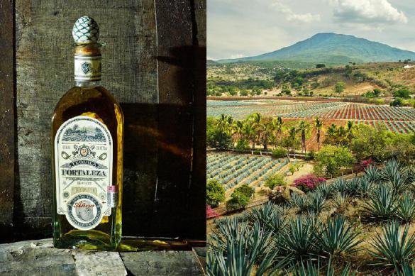 Пандемия не мешает Мексике производить и продавать текилу