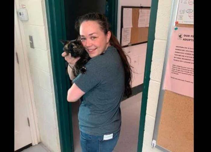 Женщина нашла кошку через 10 лет после пропажи