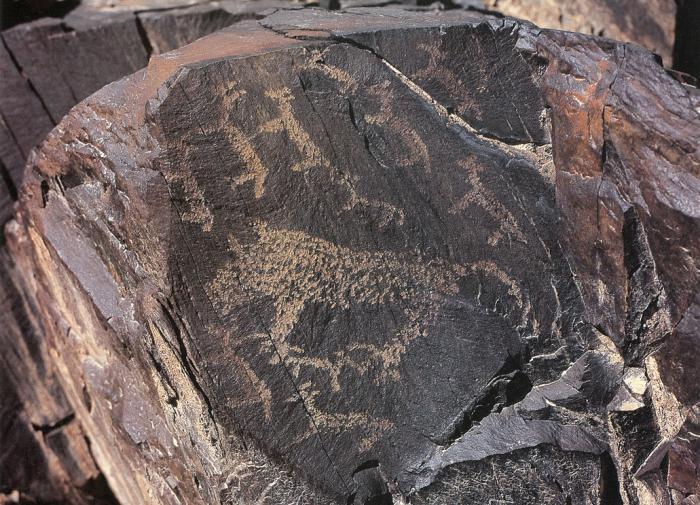 Археологи расшифровали средневековые петроглифы Алтая
