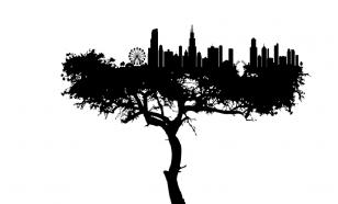 Как экология встроена в политику и бизнес