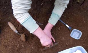 В Дании обнаружили тысячи монет эпохи Средневековья