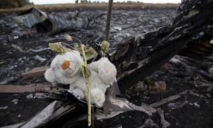 "План ""Б"" по Боингу MH17 уже задействован"