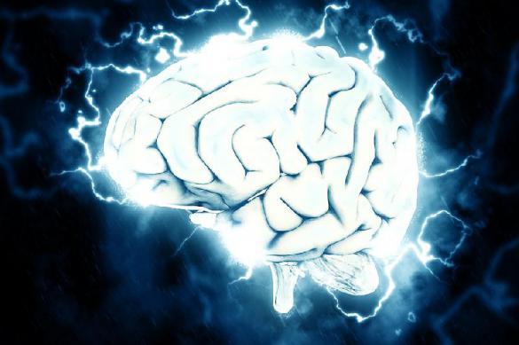 Рыбий жир или черника сохранят здоровье мозга