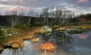 В Приморье решают судьбу Международного заповедника «Озера Ханка»