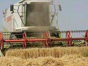 Сельскому хозяйству подарили новую жизнь? - Прямой эфир Pravda.Ru