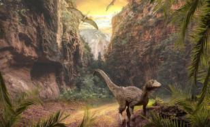 Разгадана тайна следов динозавра на потолке пещеры