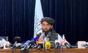"""""""Талибан""""* просит страны мира помочь в борьбе с торговлей опиумом"""